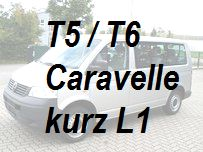 T5 T6 Caravelle kurz L1