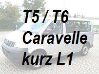 VW T5 / T6 Caravelle kurz L1