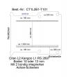 Citan Kangoo Boden mit 2 Ladungssicherungs-Schienen L2 T101